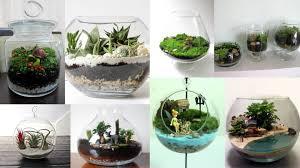 blog how to make a terrarium garden chhajedgarden com