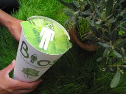 biodegradable urn biodegradable urn helps you push up daisies grist