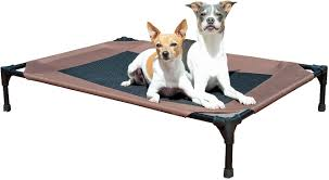 Elevated Dog Beds For Large Dogs K U0026h Pet Products Pet Cot Chocolate Large Chewy Com