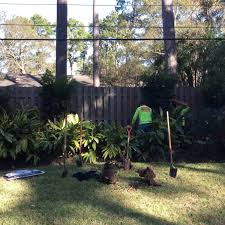 delivery and planting landscape delivery big tex tree nurseries