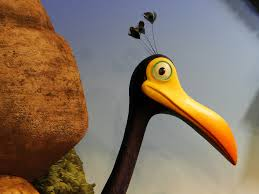 kevin bird