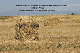 Stand Up Hunting Blinds Your Store Free Shipping The