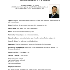 common resume format top chronological resume format best