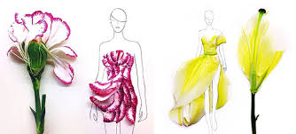 flower petals designer turns real flower petals into fashion illustrations