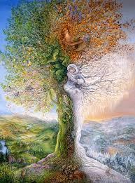 josephine wall tree of four seasons