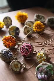 28 best herb camp for kids images on pinterest herbalism