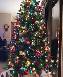 wisconsin fraser fir christmas tree tree classics