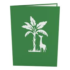 Jungle Birthday Card Jungle Animals Pop Up Birthday Card Lovepop