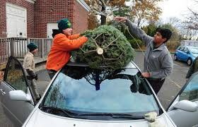 boy scout troop 82 of fairfield sells christmas trees and wreathes