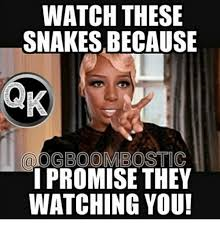 Watching You Meme - watch these snakes because oogboombostic i promise they watching you