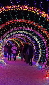 when do the zoo lights end lit arches diy with pvc pipe maybe an idea for dad and johnny to