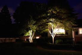 led lights for trees with exterior tree illumination diode led and