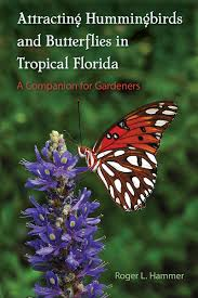 florida keys native plants attracting hummingbirds and butterflies in tropical florida u2013 the