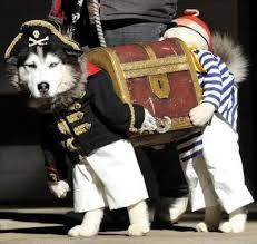 Dog Halloween Costumes Creepy Dog Halloween Costume Anandtech Forums