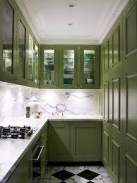 Sage Green Kitchen Cabinets Houzz - Green cabinets kitchen