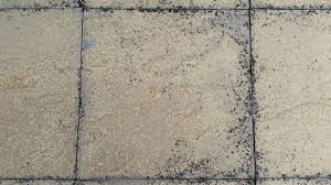 Jeyes Fluid Patio Cleaner by Lichen Black Splodges On Driveway Black Marks On Patios Jet Washing