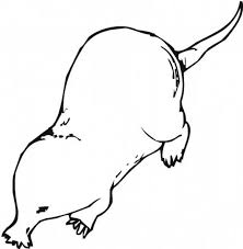 monty mole character coloring pages good realistic wombat