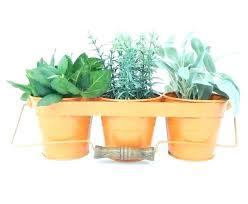 home design outlet center reviews fairy garden kit lowes s home design 3d online studioceramics me
