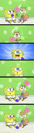 25 best spongebob ideas on pinterest spongebob tv sponge bob