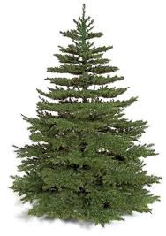 christmas tree no lights wholesale artificial pine tree artificial christmas pine trees
