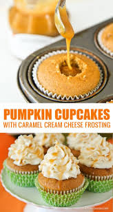 the 25 best thanksgiving cupcakes ideas on apple shop
