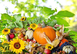 food fall fruit vegetables autumn thanksgiving wallpaper