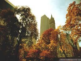 autumn in new york wallpapers seasonal crazy frankenstein