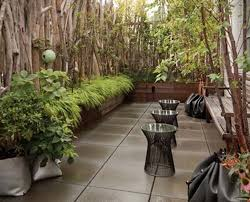 Rooftop Garden Ideas 99 Best Rooftop Garden Images On Pinterest Rooftop Gardens