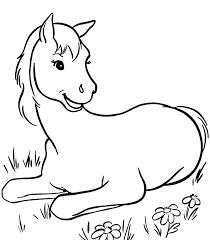 animal horses coloring pages u2014 allmadecine weddings