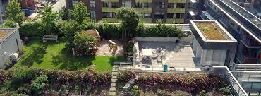 come realizzare un giardino pensile fiscali per trasformare il tuo terrazzo in un giardino
