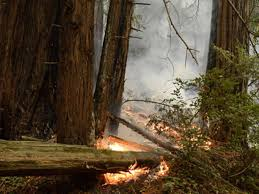 Wildfire Near Reno by Big Sur Fire Grows To Nearly 33 000 Acres Sfgate