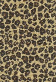 floor excellent flooring design ideas with leopard print