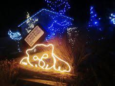 columbus zoo christmas lights columbus christmas columbus christmas pinterest