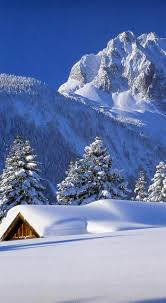 best 25 south lake tahoe cabins ideas on pinterest cabins in
