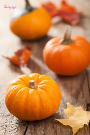 halloween fall wallpaper 105 best autumn iphone wallpaper images on pinterest happy