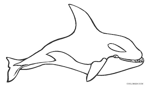 coloring page killer whale printable whale coloring pages for kids cool2bkids