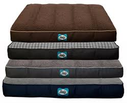 sealy cozy comfy sherpa memory foam dog and pet bed coastal pet