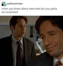 X Files Meme - spooky x files memes home facebook