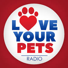 pets news tips u0026 guides glamour dog groomers dublin dog grooming prices rates services and more