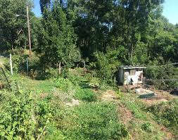 decolonizing permaculture unsettling america