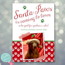 81 best dog christmas cards images on pinterest christmas cards