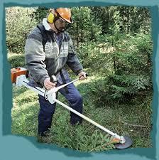 garten und landschaftsbau ausbildung jungekarriere wetzlar de ausbildung bei der stadt wetzlar