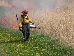tallgrass prairie herbert hoover national historic site u s