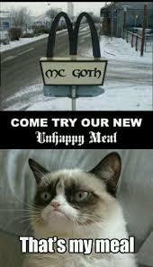Unhappy Meme - image 545624 grumpy cat cat and memes
