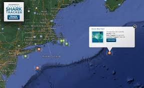 track cape cod u0027s tagged sharks online new england boating u0026 fishing