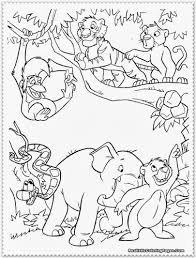 drawn animal jungle animal pencil and in color drawn animal