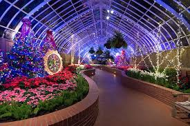 phipps conservatory christmas lights holiday magic brings lights and festive flora to oakland blogh