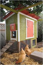 Easy Backyard Chicken Coop Plans by Backyards Enchanting Backyard Chicken Coop Designs Free Backyard