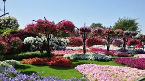 cliserpudo beautiful flower garden wallpaper images