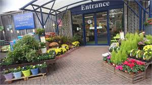 stansted park garden centre hampshire